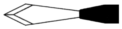 MSL_Pointe Slit